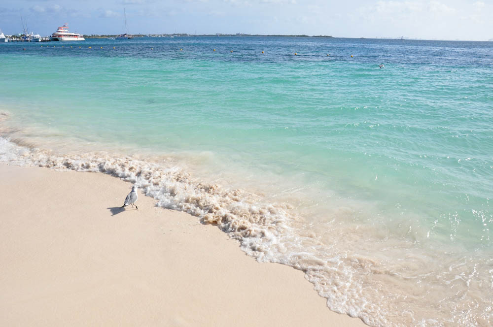 The transparent waters of Quintana Roo