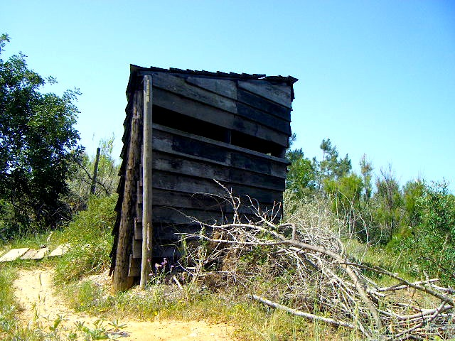 Wooden shelter used by bird watchers