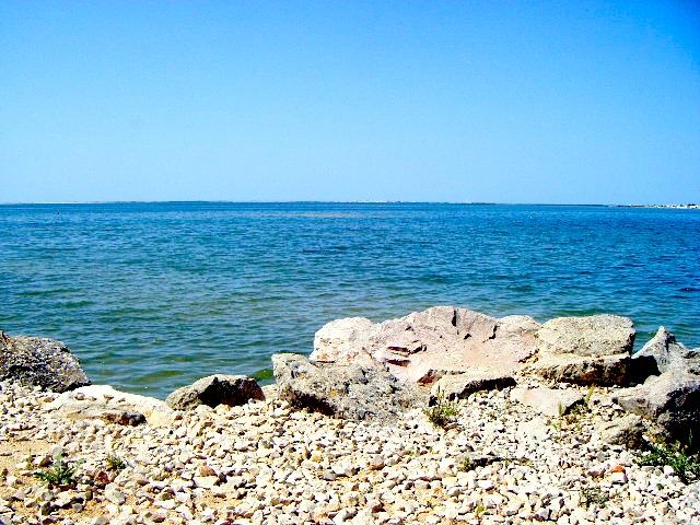 A view of the sea from the Park