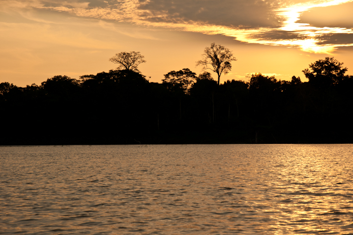 Sunset from the Amazon River