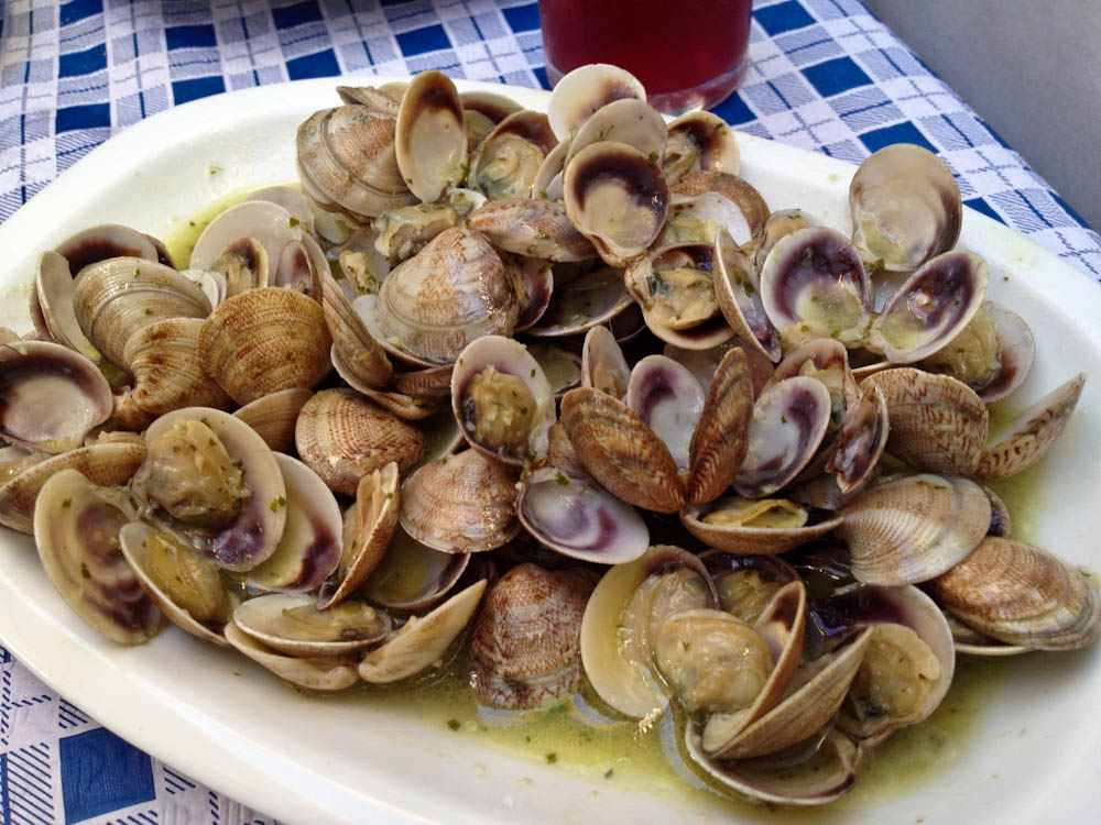 Delicious clams in white wine and buttery sauce