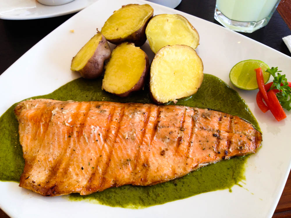 Grilled salmon trout in green sauce.