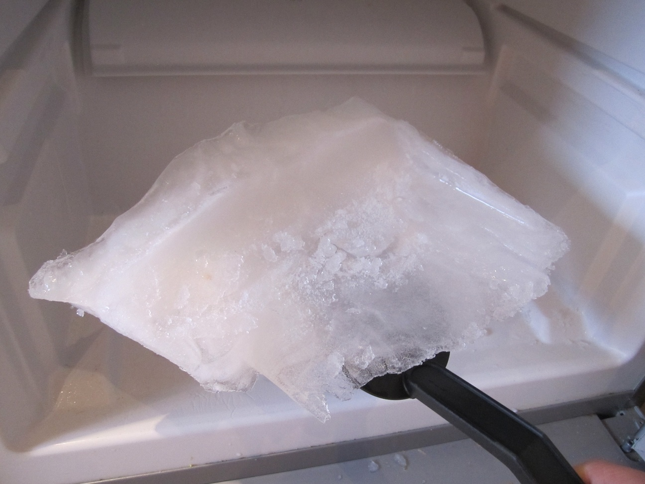 Whoever bought our fridge has no need to purchase ice for cocktails no more!