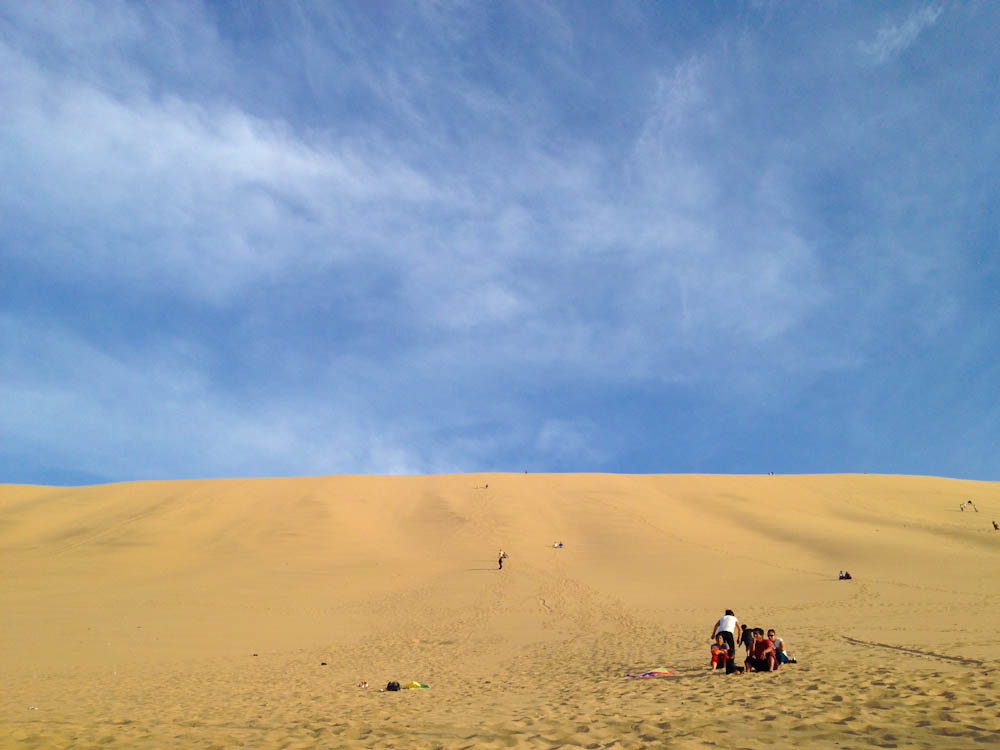 and the ones in Huacachina are home to sandboarding and dunebugging activities.