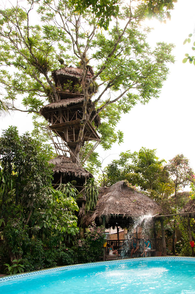 The amazingly tall treehouse!