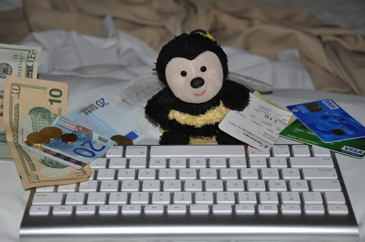 Bee programming and counting the money she makes