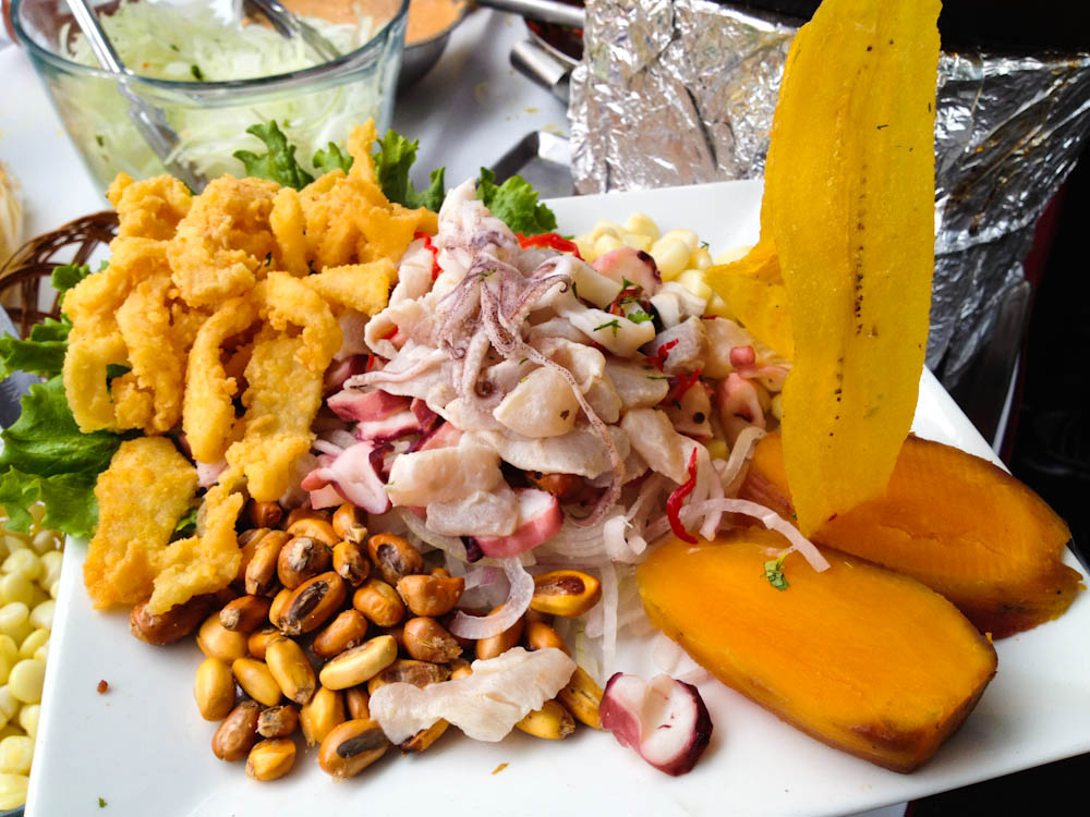 Mixed ceviche and fried calamari