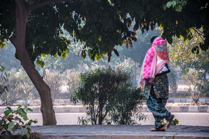 A woman walking around the Dwarka region of Delhi, where we live.