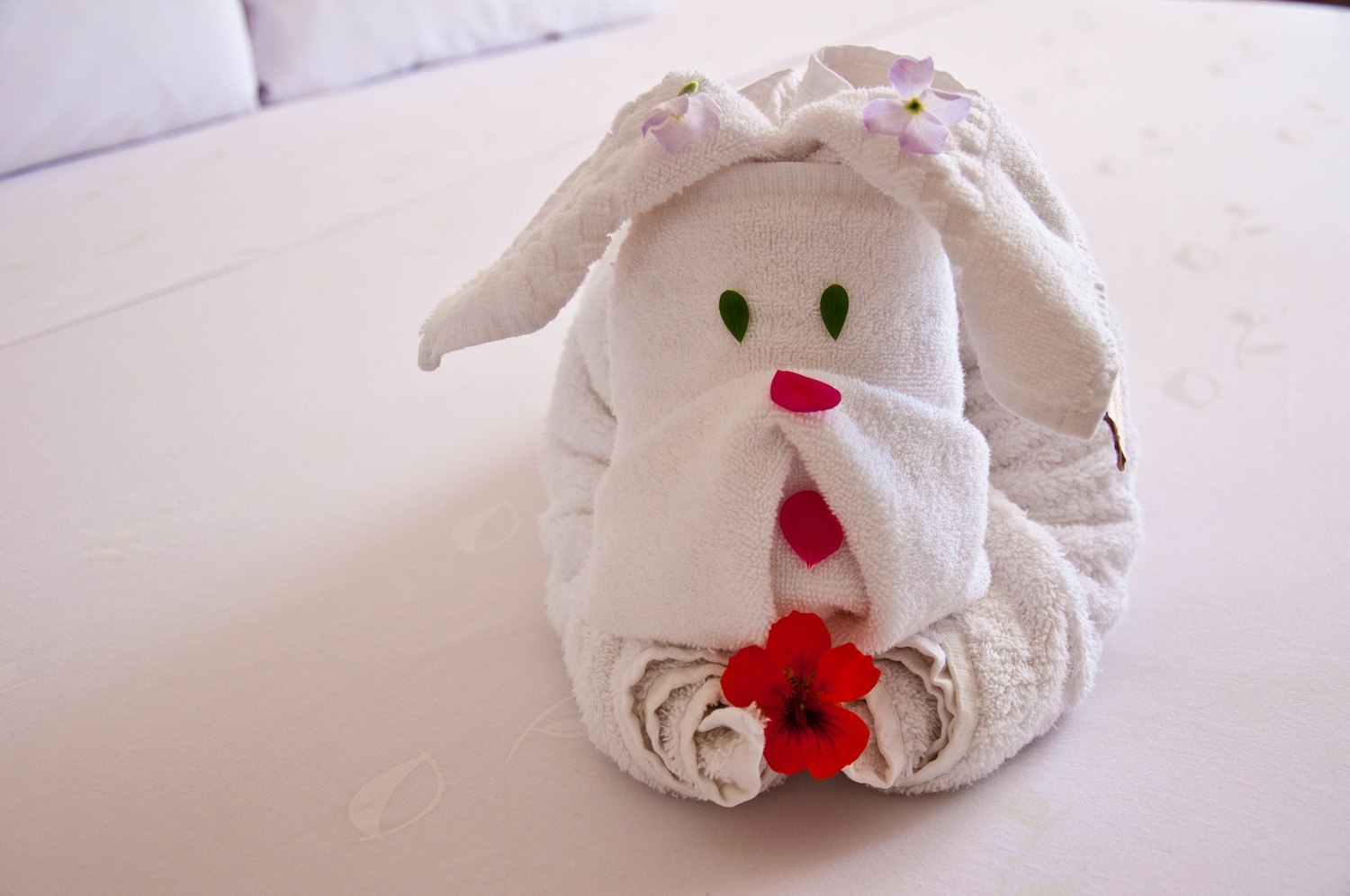 Super cute towel art, aka, Rodolfo!