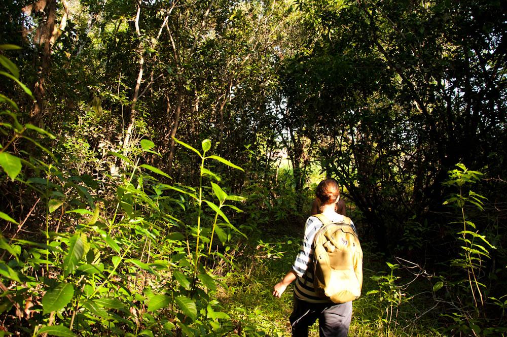 Zara on the jungle walk