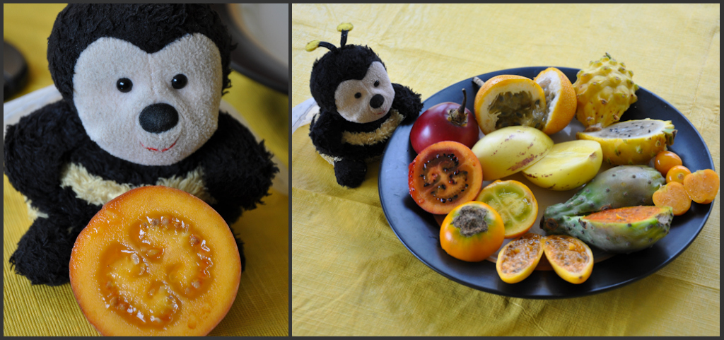 Foodie Bee: tasting exotic fruits in Ecuador