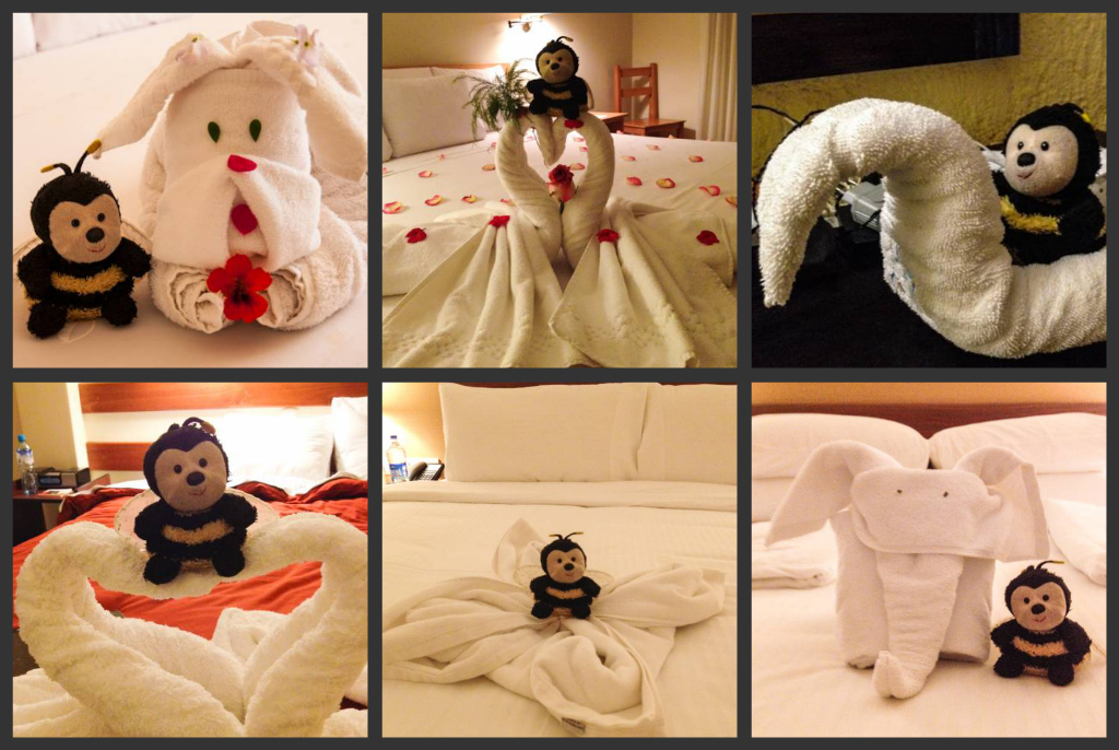 Enjoying towel friends all over the place!