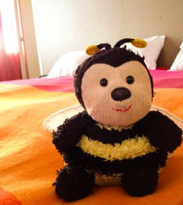 Bee enjoying the great bed!