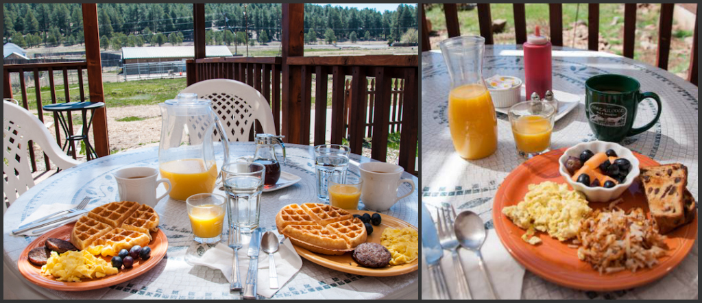 Delicious home-made breakfast outdoors